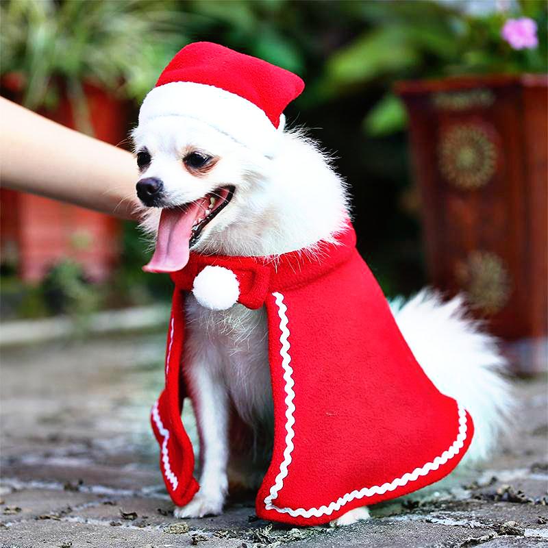 Christmas Cloak Costume For Pets Tierkostum Weihnachtshund Weihnachten Tiere