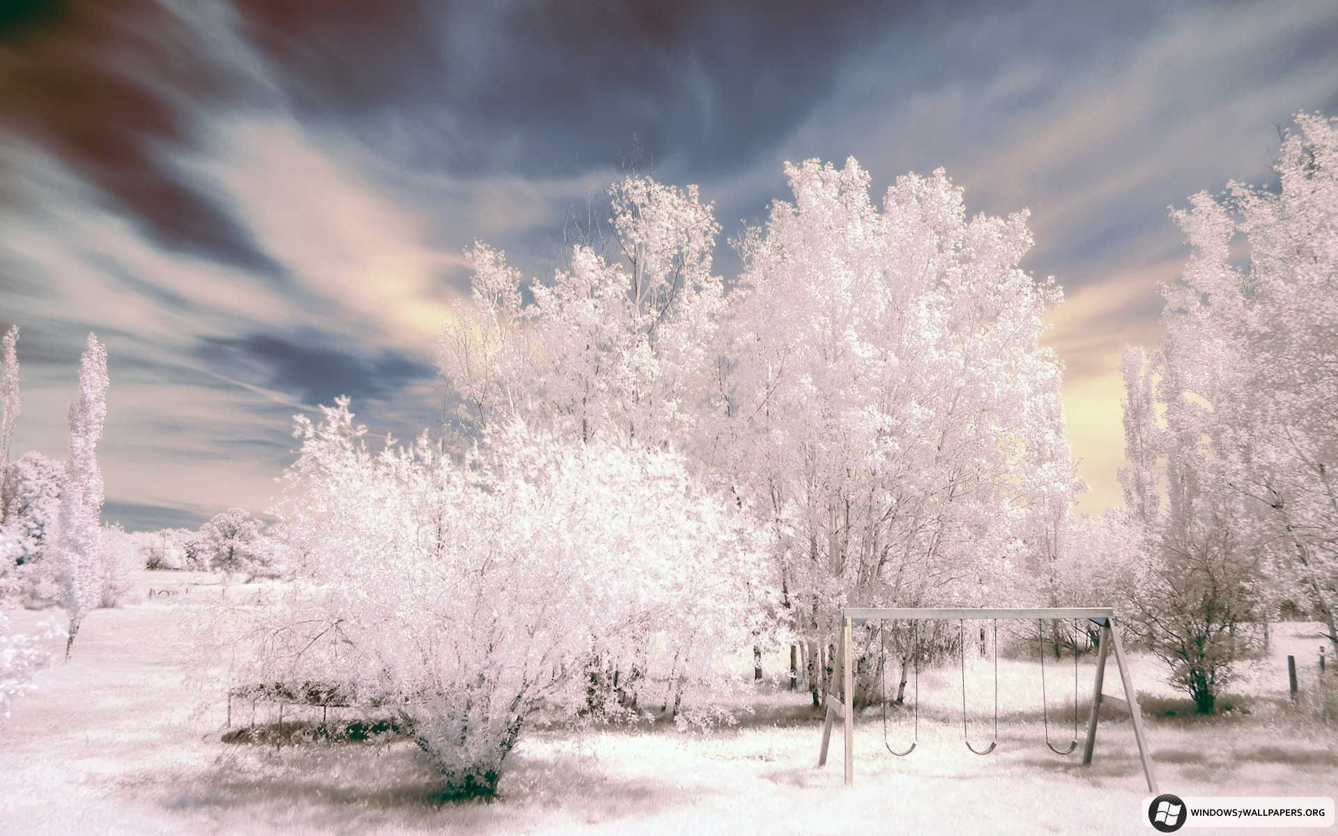 free microsoft screensavers winter scene winter scenes for windows