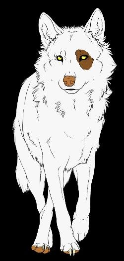 Pin De Torie Story Em Anime Wolf Lobos Raposa Desenhos