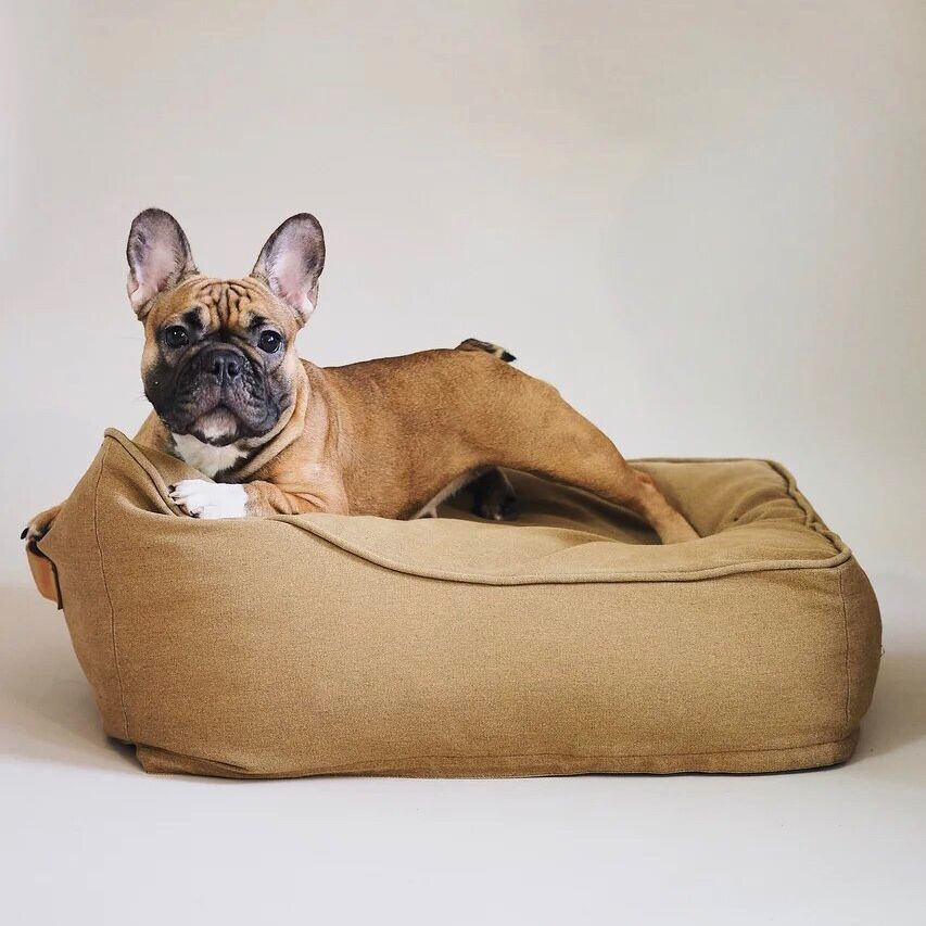 Tramplini Dog Bed Brown Black Washable Pet House Bed From Durable Thick Fabric Handmade Dog Bed Medium Large Xlage Bed For Dog In 2020 Handmade Dog