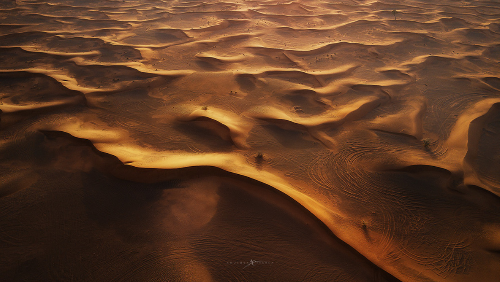 Learn to Master Desert Landscape Photography in 2020