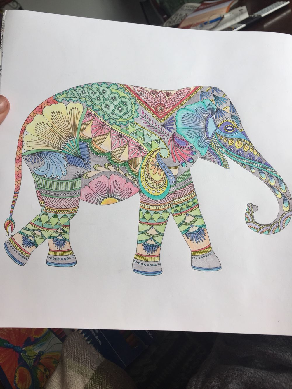Co color to draw - 17 Best Images About Colour On Pinterest Coloring Here I Go Again And Coloring Books Download Image Co Color Me Draw Me Animal Kingdom