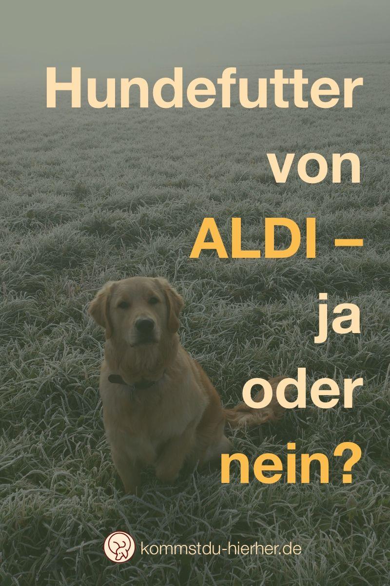 Hundefutter Von Aldi Oder Denken Hilft Hunde Futter Hundefutter Und Hunde Ernahrung
