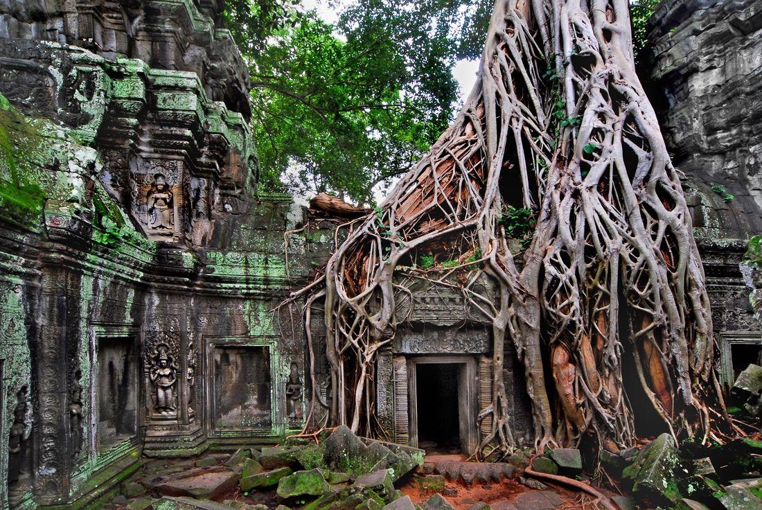 forest temple, cambodia