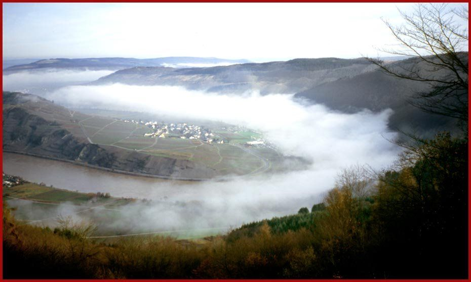 Mosel Valley in mist
