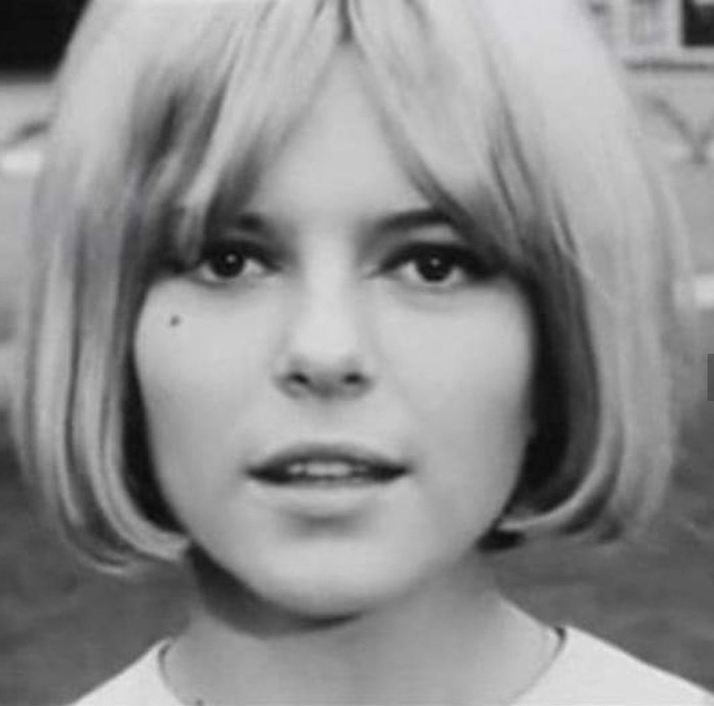 Pin by Dylan Cree on France gall in 2019 France gall