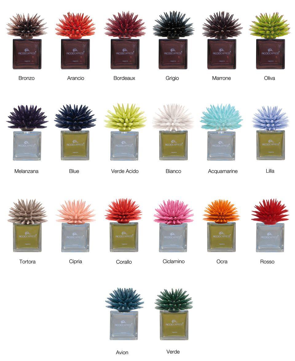 Riccio Caprese ® | PROJECT: BRIDGEHAMPTON | Plants