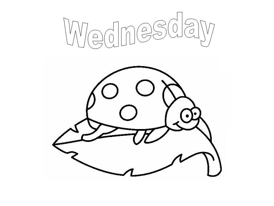 Días de la semana en inglés | Día de la semana | Pinterest | Colores ...