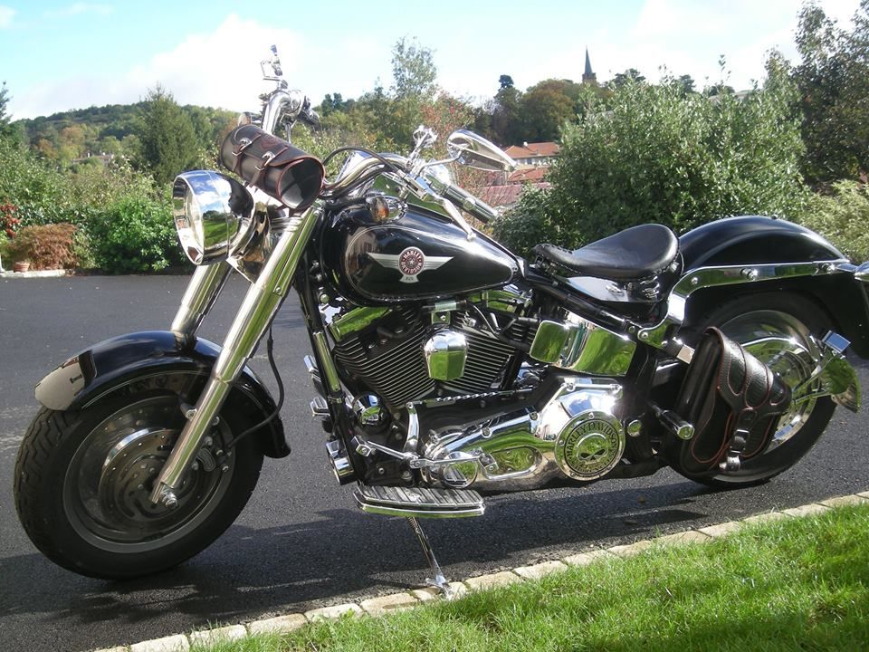 bonjour softail fat boy de 2005 selle solo plaque lat rale kit de d port de cligno sissy bar. Black Bedroom Furniture Sets. Home Design Ideas