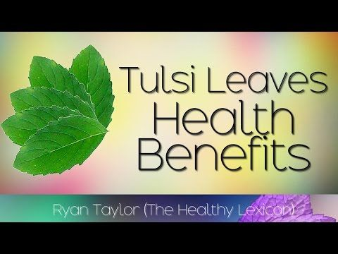 Tulsi Leaves: Benefits and Uses (Holy Basil) - YouTube