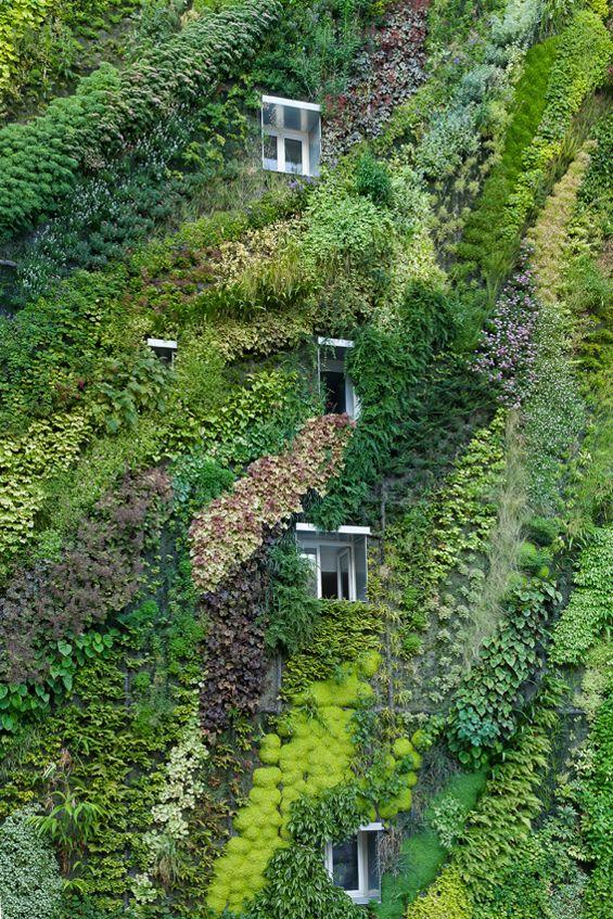 Pdw Patrick Blanc L Oasis D Aboukir Jardins Sur Les Toits