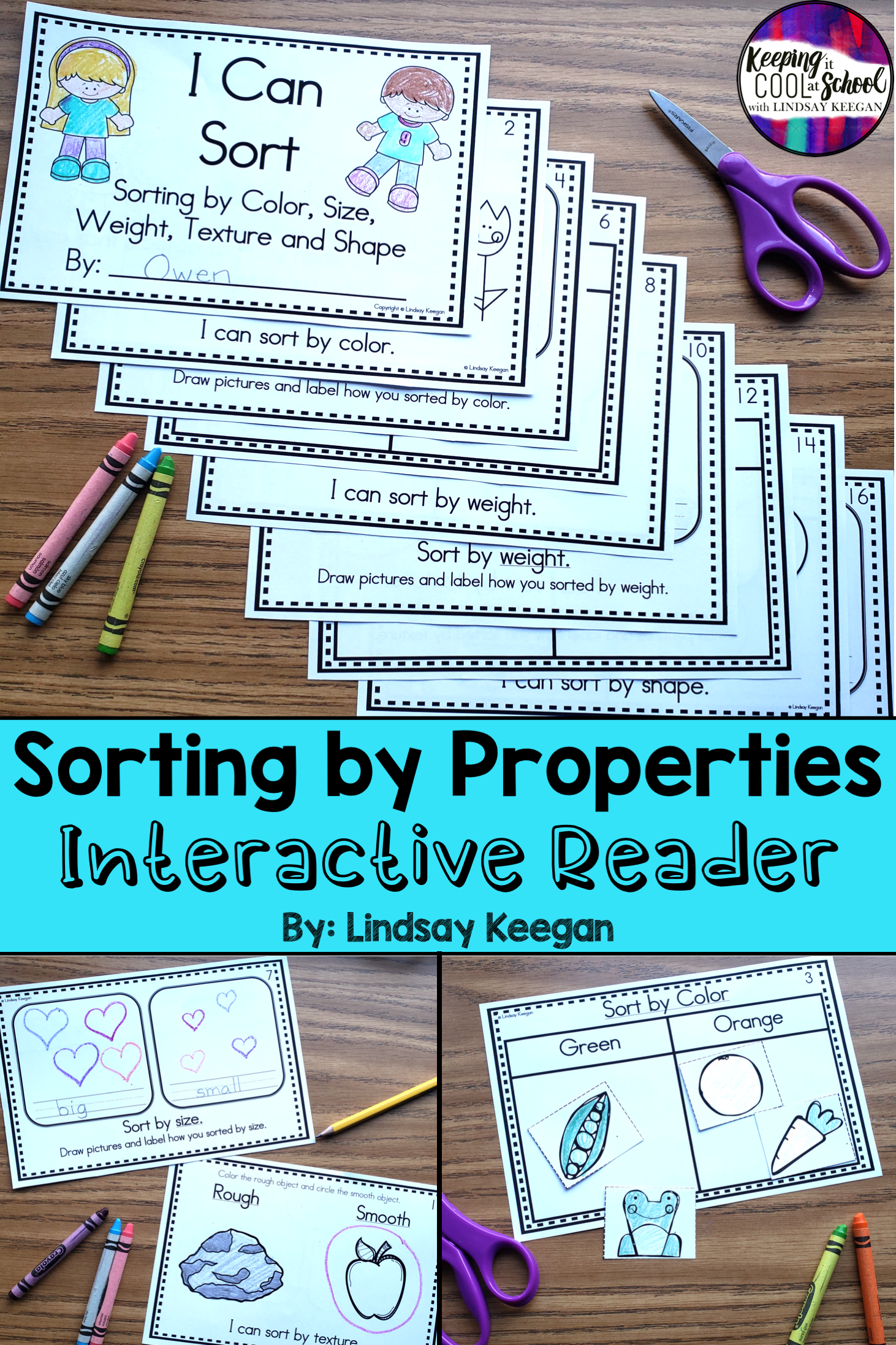 Sorting By Properties Interactive Reader In