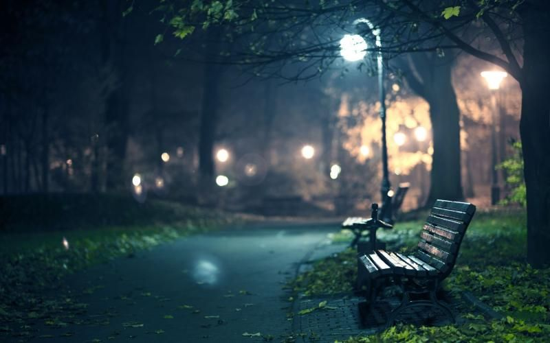 Free HD Wallpapers for your computer: A+bench+in+a+park+at+night