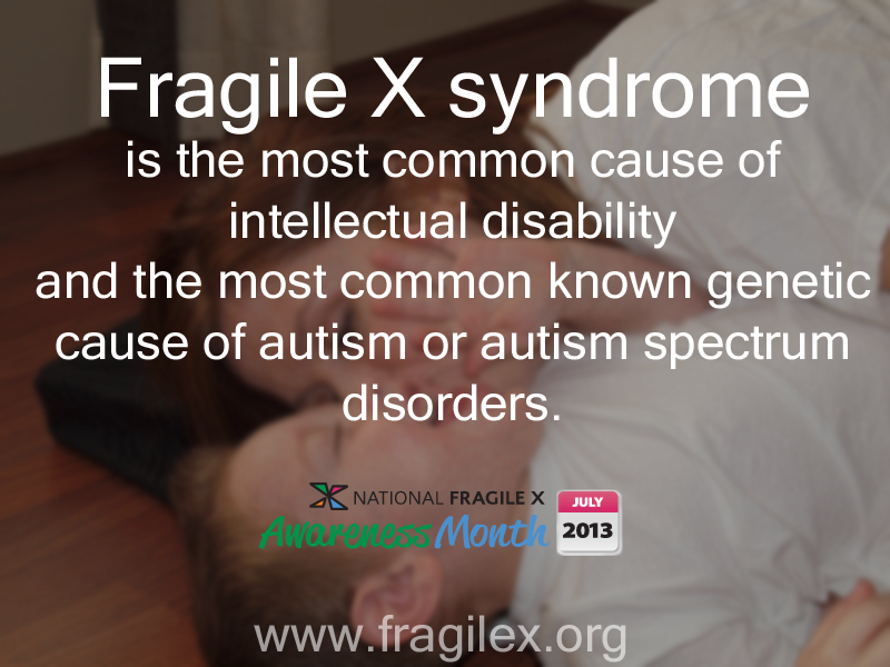 an analysis of the inherited genetic condition fragile x syndrome The fragile x mental retardation 1 (fmr1) gene is found on the x chromosome, meaning fragile x syndrome is an x-linked disorder and is passed from one generation to the next on the x chromosome typical men have one x chromosome and one y chromosome and typical women have two x chromosomes.