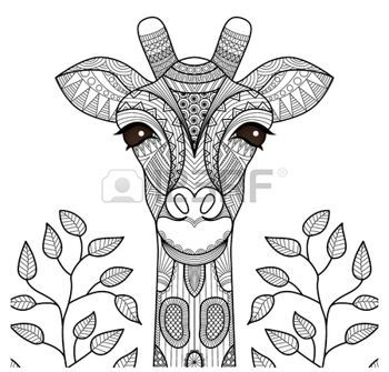 Stock Vector Giraffe Coloring Pages Animal Coloring Pages