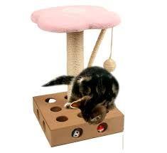 rascadores de gatos - Buscar con Google