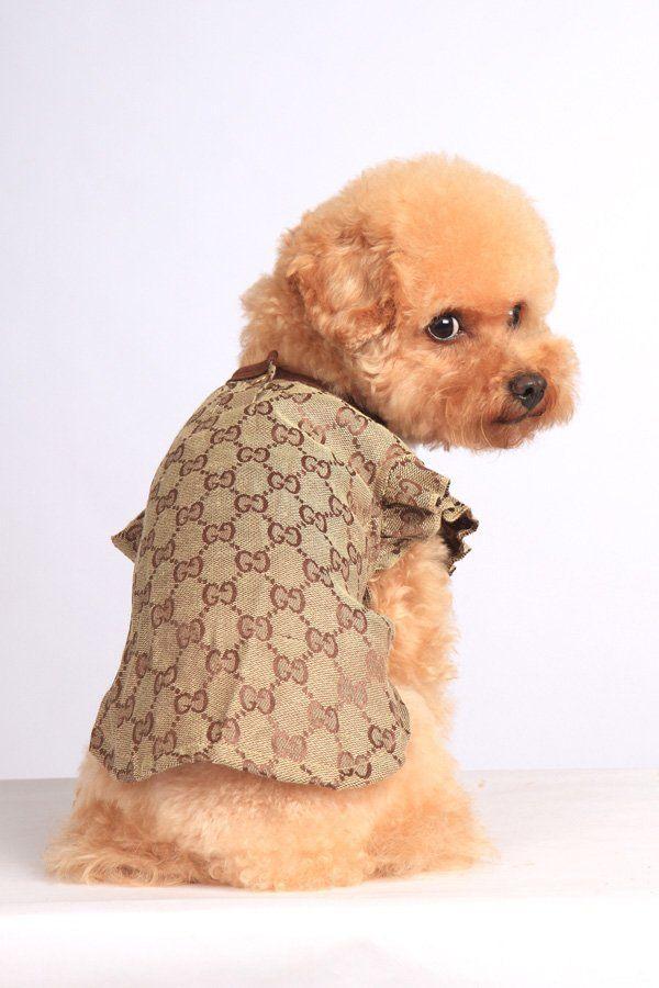 Designer Dog Pet Clothes Designer Dog Clothes Dog Design Dog