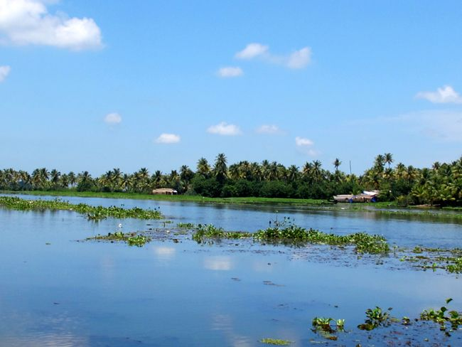 Blue blue skies on the Kerala backwaters.     www.travellers-palm.com    India, Endlessly Fascinating!