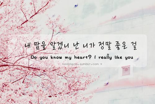 Красивые корейские картинки текстовые, для мужчины