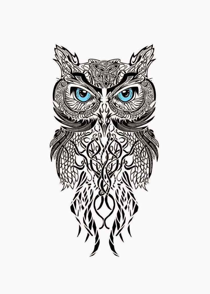 image result for owl tattoos small tribal d vme pinterest owl rh pinterest com tribal owl tattoo ideas tribal owl tattoo designs