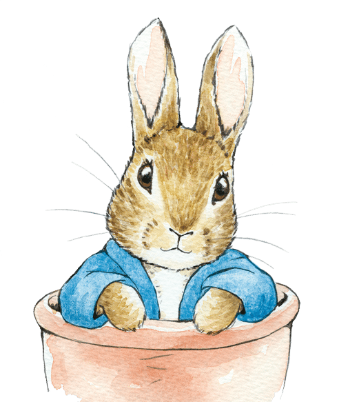 Peter Rabbit Tale Of Peter Rabbit Easter Bunny Rabbit Hare for Easter - 492x583