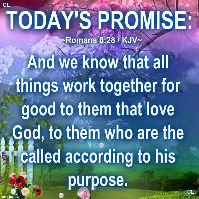 Father And Son Working Together Quotes: ~ROMANS 8:28 / KJV~ And We Know That All Things Work