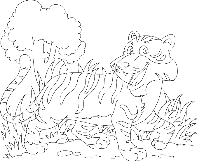 several animal pictures to color   School - Coloring Sheets   Pinterest