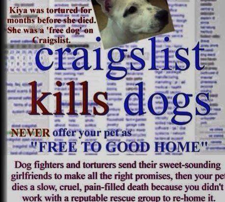 Petition Stop Craigslist From Allowing To Sell Or Give Away Pets