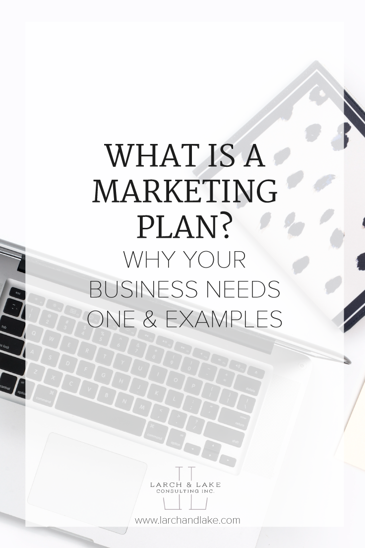 What Is A Marketing Plan  Business Marketing Strategies And
