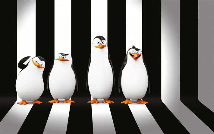 壁紙をダウンロードする ザ,ペンギンズfromマダガスカル, 文字, 3dペンギン