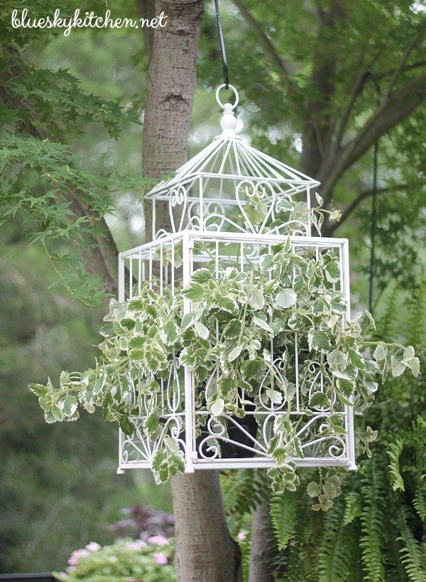 Estate Sale Bird Cage Becomes Backyard Planter for a beautiful backyard spot. Do it yourself paint project is beautify in the garden.