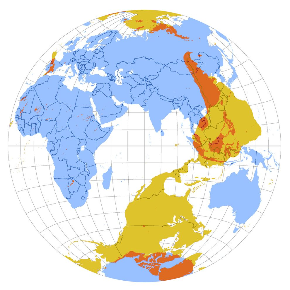 A map showing whats on the exact opposite side of the planet