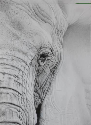 "Saatchi Art Artist Stacey Ferguson; Drawing, ""Elephant Eye"" #art"