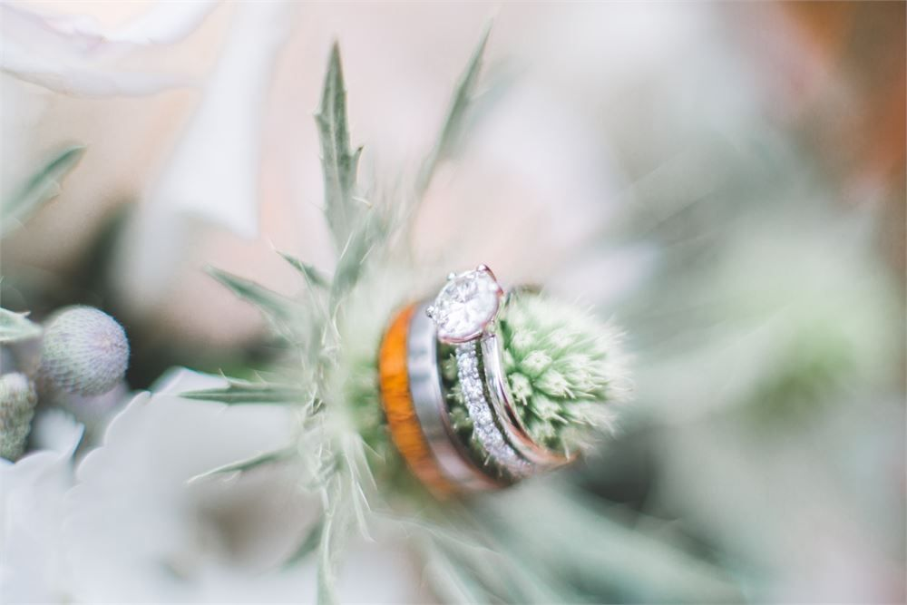 This wedding ring picture is a great idea! Taken byJacob and Pauline Photography. Why not display your wedding rings in your bouquet for a striking photo opportunity?