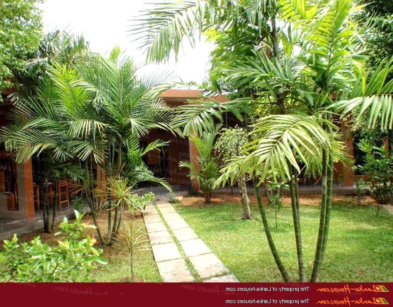 BEAUTIFUL HOME GARDEN IN SRI LANKA Beautiful home