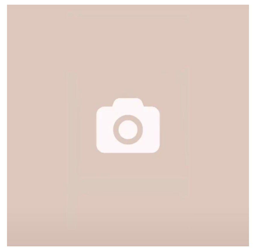 Camera Icon Pastel Camera Icon Pastelcameraicon Iphone Icon Iphone Photo App App Icon