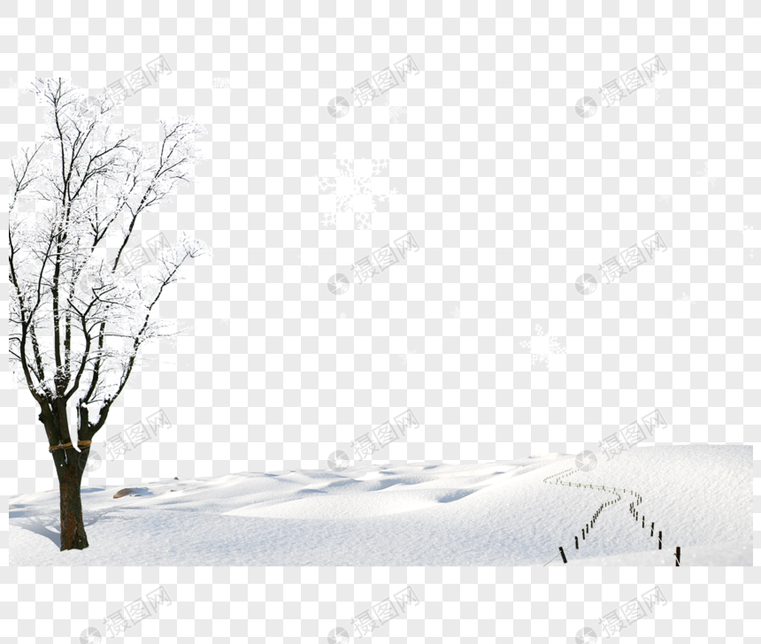 Pine Tree Covered With Snow Snow Tree Pine Christmas Snow Pine Transparent Background Png Clipart Snow Tree Tree Illustration Snow Illustration