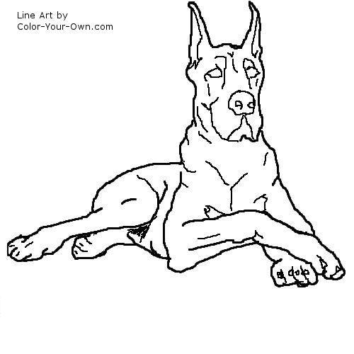 Dog Great Dane Line Art Dog Line Drawing Dog Drawing Dog Line