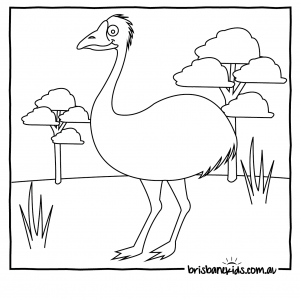 Australian Animals Colouring Pages Emu In