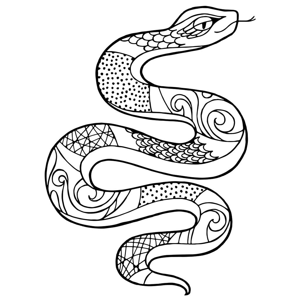 Snake Colouring Picture Snake Coloring Pages Snake Colouring In Coloring Pictures