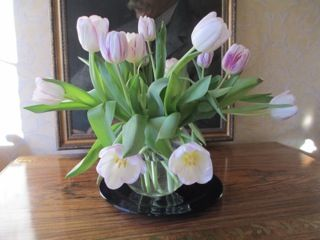 Beautiful tulips - thank you! http://www.sarahraven.com/flowers/bulbs/tulips
