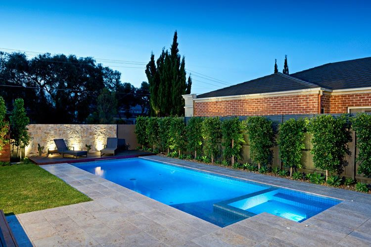 Like the plants along the dark grey fence line holiday for Pool designs victoria