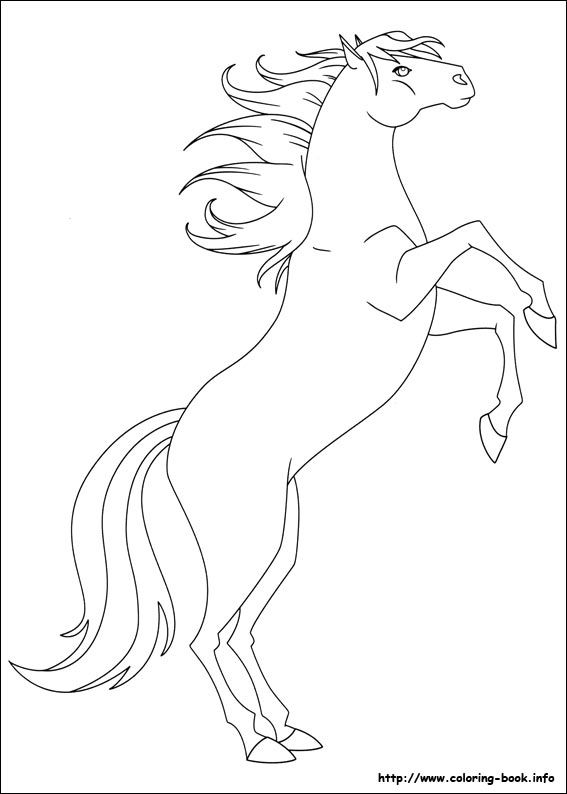 The Ranch Coloring Picture Coloring Pictures Horse Coloring Graphic Novel Illustration