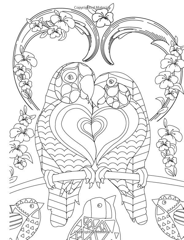 Amazon.com: Love Coloring Book: Creating More Through Color (The ...