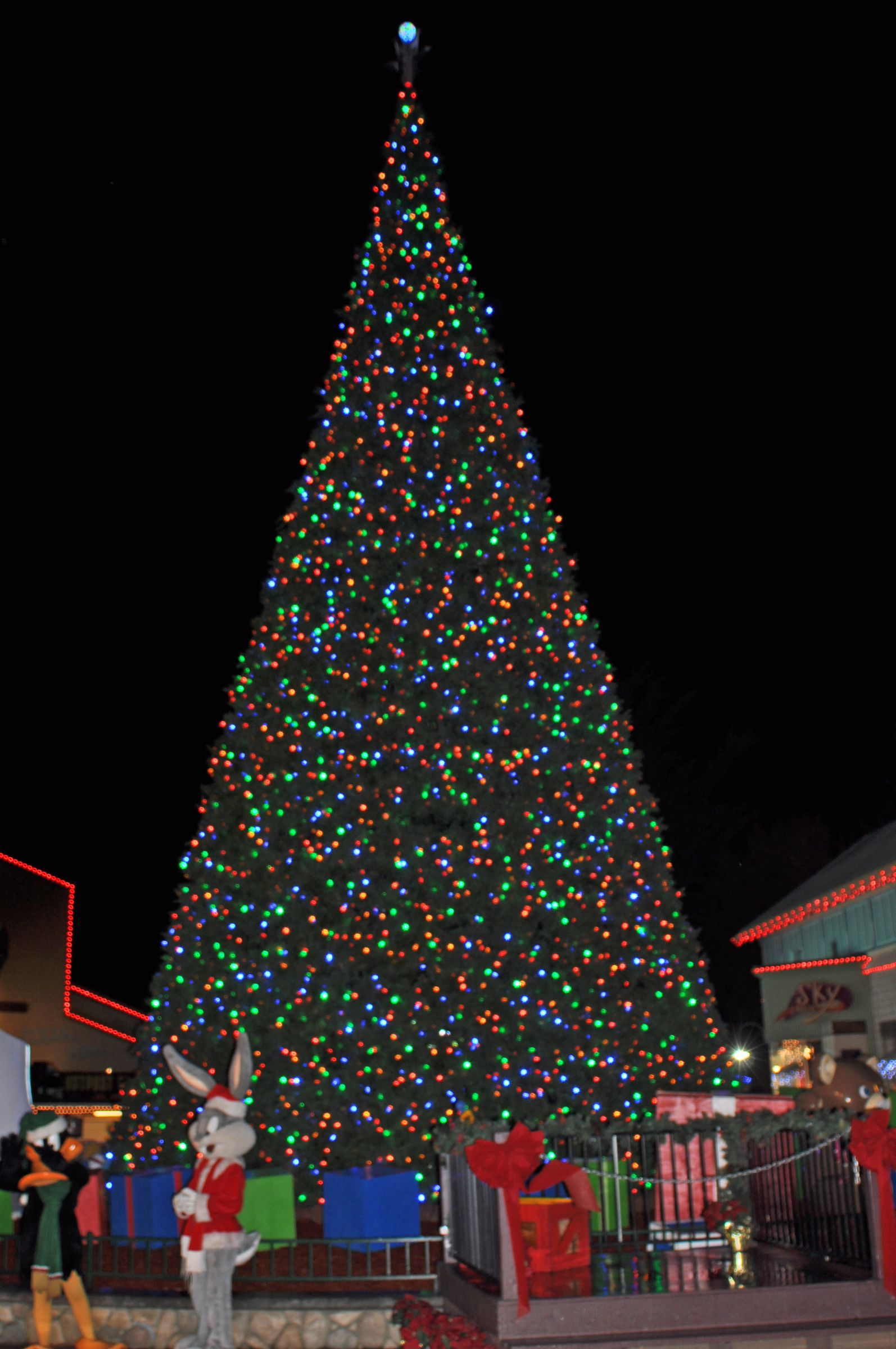 Six Flags Discovery Kingdom Chooses Giant Led Christmas Tree And Energy Efficient Led Christmas Lights Christmas Lights Etc Led Christmas Tree Christmas Lights
