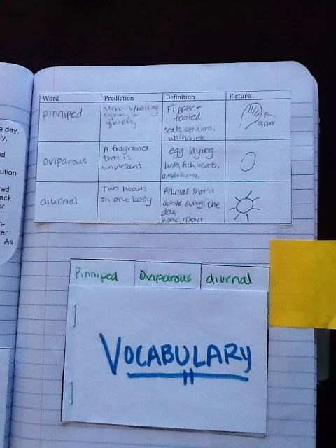 Content Cognitive Dictionary Lesson with Interactive Notebook Pages ...