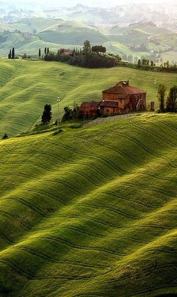 Rolling green hills and Italian cypress trees in Tuscany, Italy. Learn more about Italy with theculturertrip.com