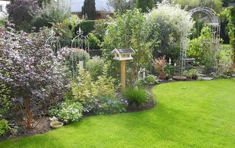 Minigärtchen Gartenvorstellungen (hier Bitte Keine Kommentare  Nur Die  Vorstellungen)   Seite 8   Mein Schöner Garten Forum