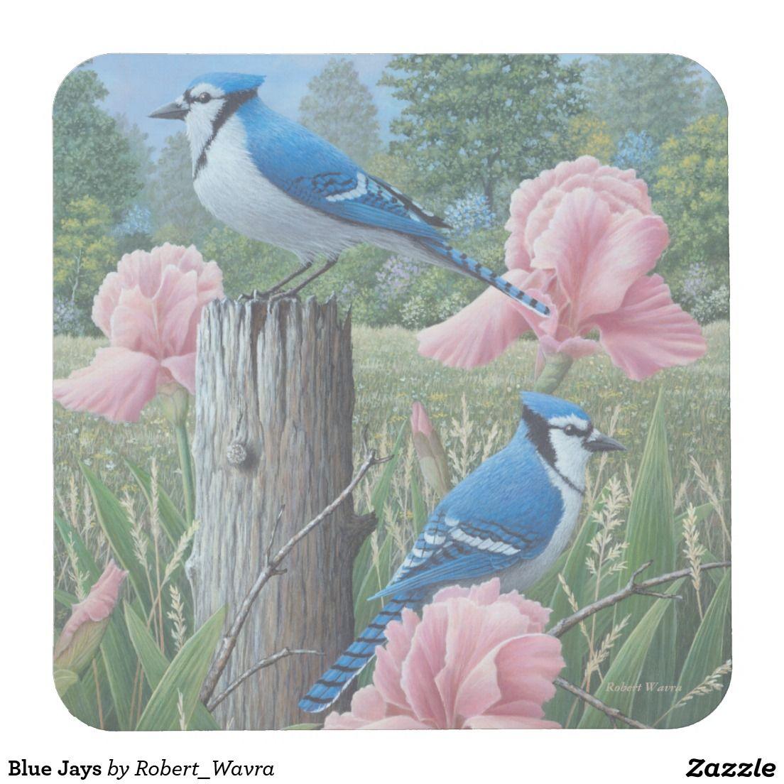 Blue Jays Square Paper Coaster Zazzle Com In 2021 Birds Painting Bird Art Bird Pictures