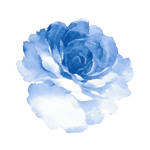 All about the art via Tumblr Flower drawing, Blue